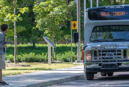 Jour de la Terre : le transport en commun gratuit ce jeudi