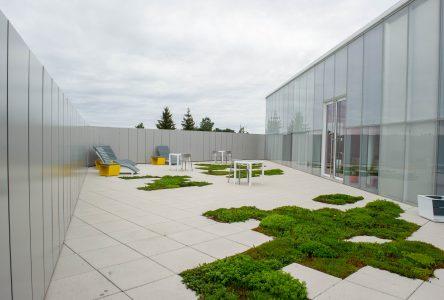 Une terrasse en chantier à la bibliothèque publique