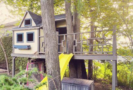 La petite maison dans l'arbre qui a créé un élan de solidarité