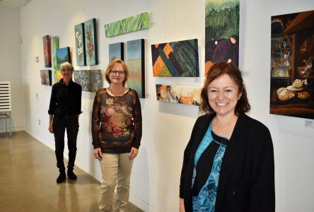Une nouvelle exposition à la bibliothèque publique de Drummondville