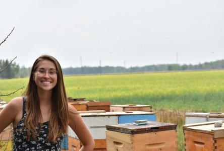 Cendrine D'Amour prend la clef des champs pour produire du miel